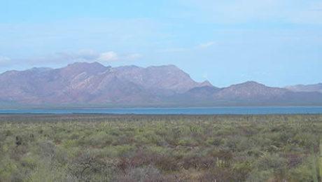 Canal de Infiernillo and Isla Tiburon, Sonora