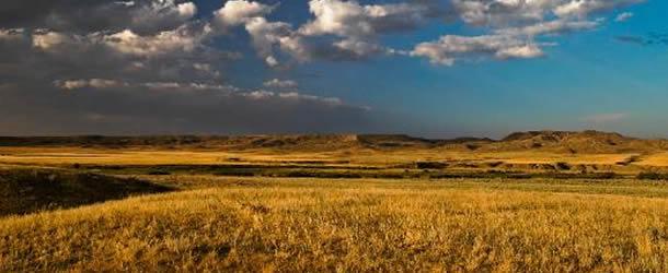 610x250-grassland-stock-photo