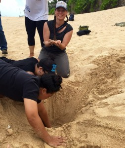 SJV Coordinator Jennie Duberstein helping with baby sea turtle recovery and release during the IUCN conference